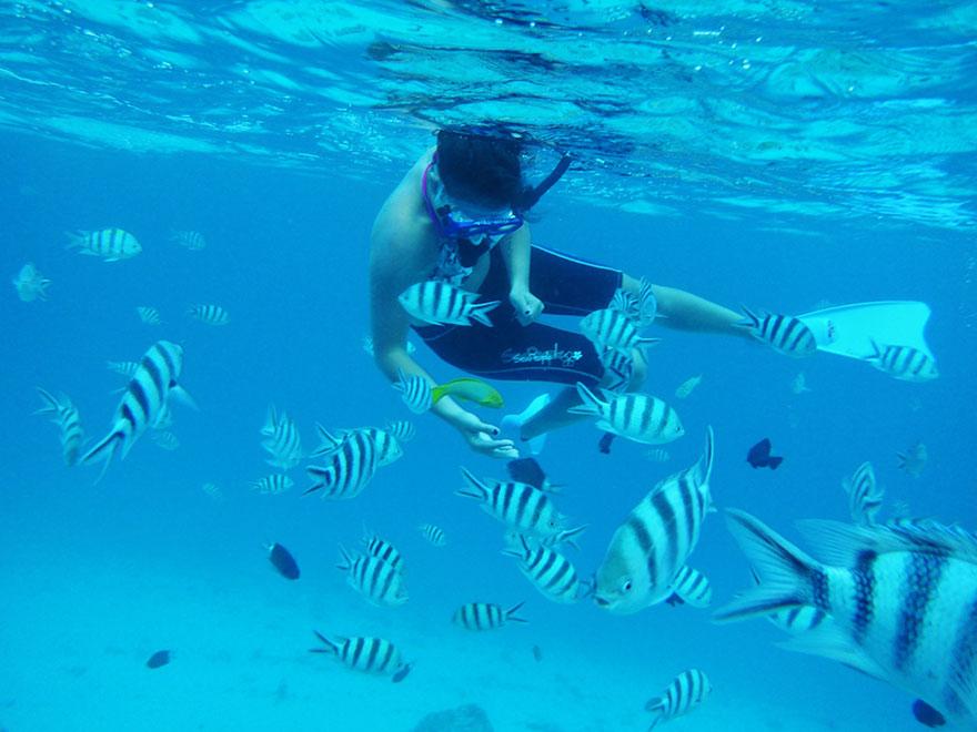 tour04_snorkel