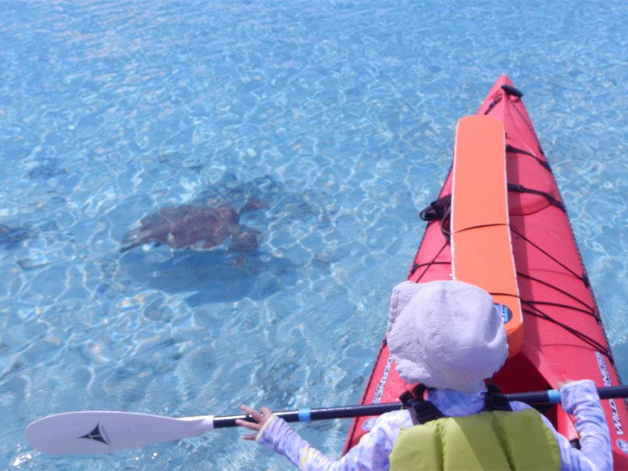 tour07_kayak